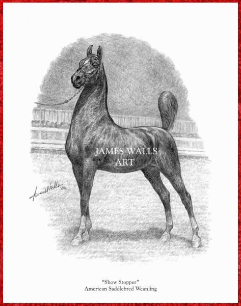 by JAMES WALLS Ltd Ed Print Roxie Highland Saddlebred Horse Art